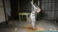 Rachel Encased In Pantyhose Then A Mummified Strappado – Part 4