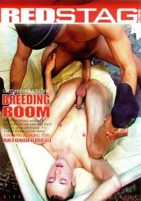Breeding Room  Vol 1