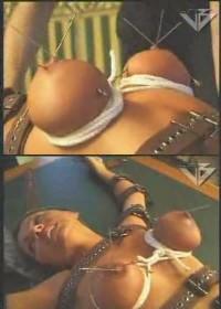 Retro Extreme BDSM