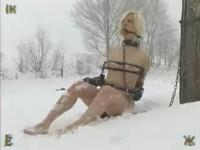 Insex – Snow
