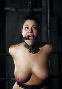 Royal Flesh For BDSM