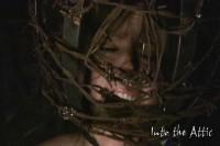 Angel Marina Bondage (2008)