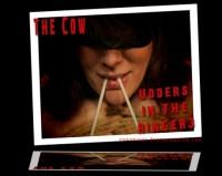 Cow Udders Ringer 3