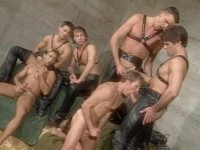 Best Gangbang Retro Collection