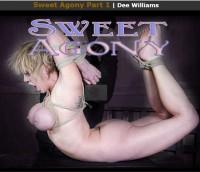 RTB – Feb 11, 2017 – Sweet Agony Part 1 – Dee Williams