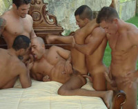 Plenty Orgies With Muscle Males