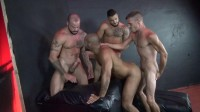The Guys Want To Have Fun