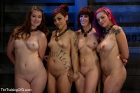 4 Girl Auditions-Day 4 – Blowjobs, Fucking, And A 4 Girl Sybian Ride