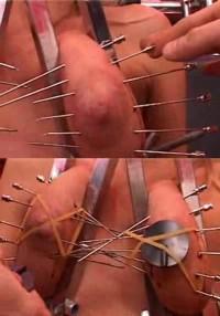 The Talent Tortured Flesh