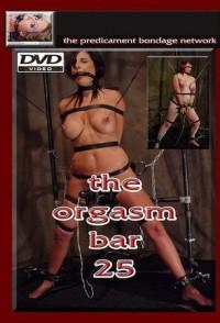 The Orgasm Bar 25 (2010)