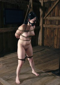 BDSM On The Farm