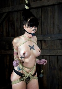 Strong And Sexy Slave In Action