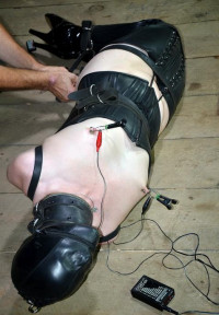 Nipples For Electro Games