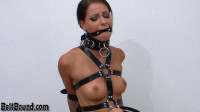 Huge Spider Gag – HD 720p