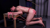 Dirk Wakefield – Bench Punishment – Chapter FIFTH