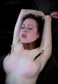 Nipple And Labia Clamps In Action
