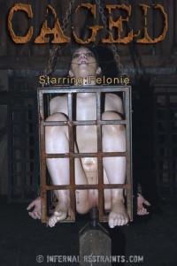 Felonie (Caged Bonus  23. 9.2015)