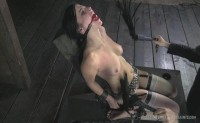 Pussy On The Pole HD