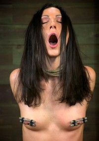 """Bound In A Sexy """"doggy Style"""""""