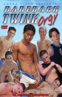 Bareback Twink Orgy – Aaron Phelps, Armon Maderas, Austin Sterling