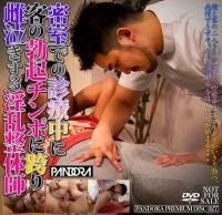 Pandora Premium Disc 027
