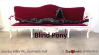 Ropemarks – Jun 11, 2013 – Blind Pony