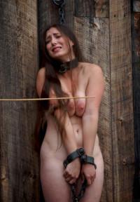 Virginal Beauty In Hard BDSM