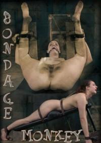 Bondage Monkey Part 3-Endza