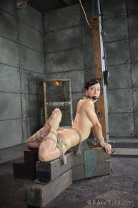 HT – Bondage Therapy – Elise Graves – Oct 22, 2014 – HD
