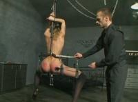 Harvested Slave Part 2