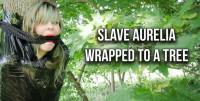 Slave Aurelia Wrapped To A Tree