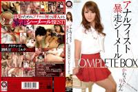 Anal Fist Runaway Shemale Complete Box Kawasaki Rion