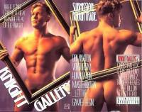Vivid Man Video – Knight Gallery Vol.2 (1995)