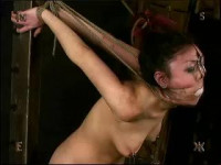 Insex – Sewn Slut (Live Feed From March 17, 2002)
