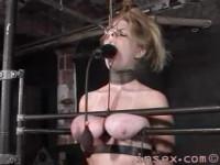 Insex – Peaches