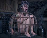 Hardcore Torture & Humiliation