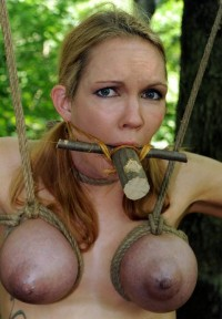 BDSM Carnival Of Pain In The Woods