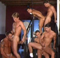 Young Gangsters Enjoy Large Orgies