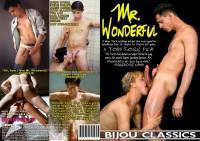 Mr. Wonderful (1987)