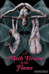 A Moth Drawn To The Flame – Cora Moth – HD 720p