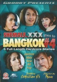 Shemale XXX Goes To Bangkok – Part 4