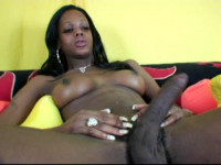 Black Tranny Whackers 5