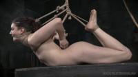 Bondage Monkey – Endza