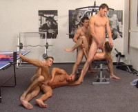 14 Muscular And Hung Boys In Hot Orgies