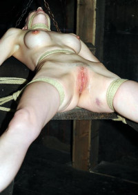 Plowed , Emily Marilyn And Claire Adams – HD 720p