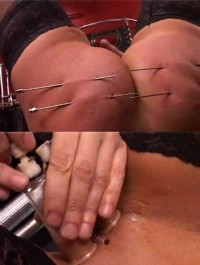 Piercing Asses