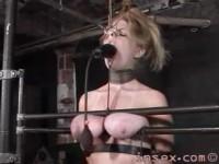 Insex – Peaches Training