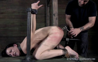 Pain Queen Elise Graves Punished Hard