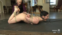 Humiliation, Hooks And Electricty Part 2