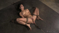 HD Bdsm Sex Videos The New Girl Part Two
